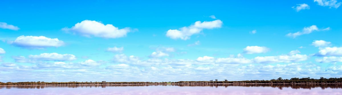 Panoramic view of Pink Salt Lake in Western Australia shutterstock_479989378-2
