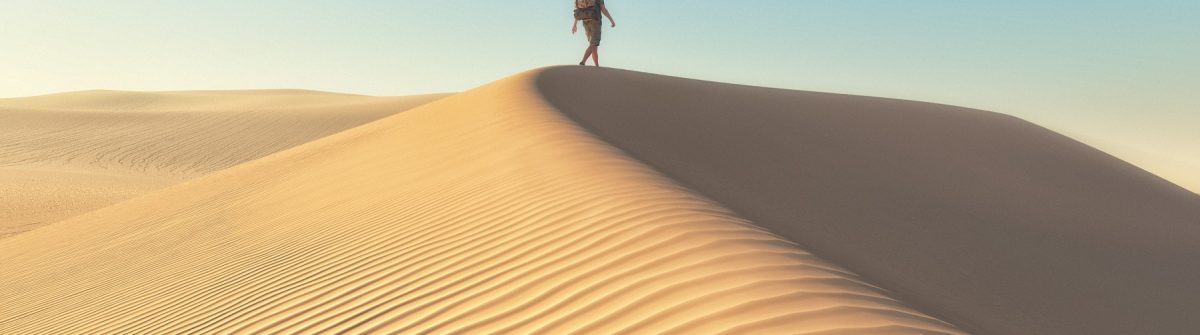 The man at the deserts landscape