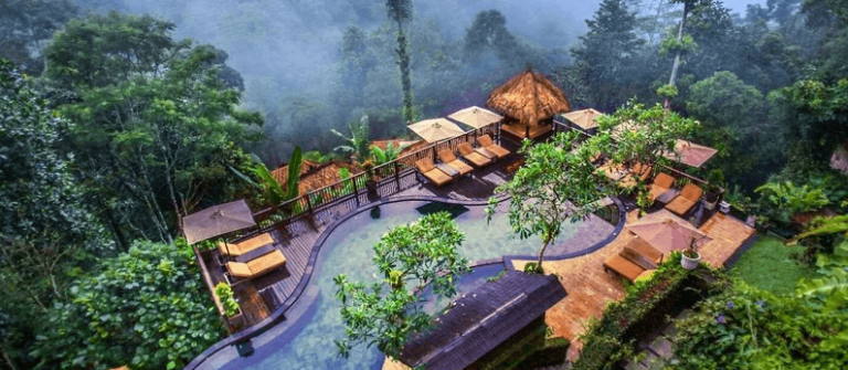 Nandini Jungle Resort & Spa