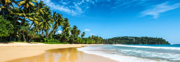 Tropical vacation holiday background – paradise idyllic beach. Sri Lanka